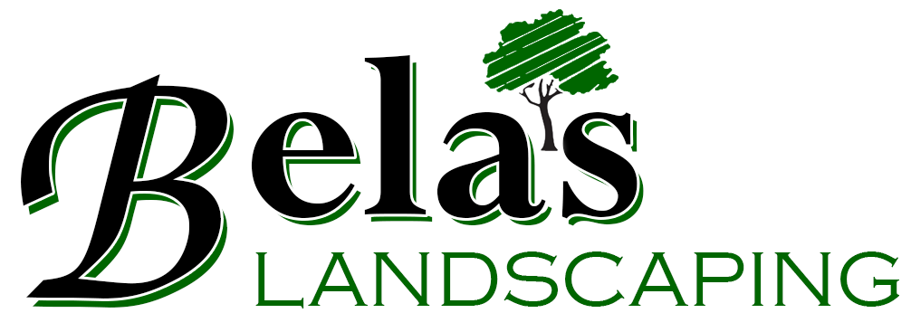 Bela's Landscaping, LLC Logo